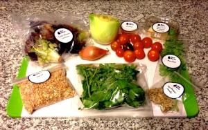 Blue Apron Shaved Fennel & Pecorino Salad